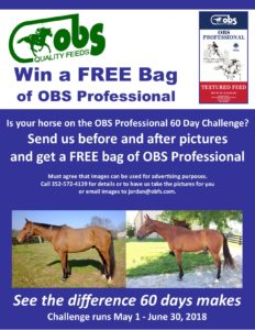 OBS Professional 60 Day Horse Challenge