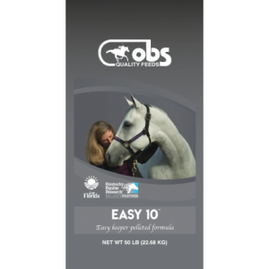 OBS Easy 10