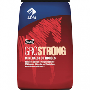 grostrong minerals for horses