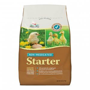 Chick Starter Non‑Medicated