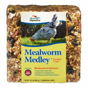 Mealworm Medley