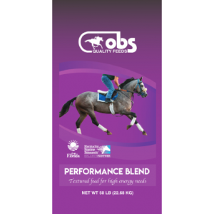 OBS Performance Blend