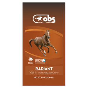 OBS Radiant Supplement