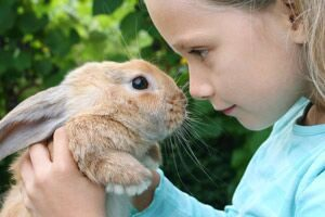 rabbit and girl | purchase your small animal supplies at OBFS