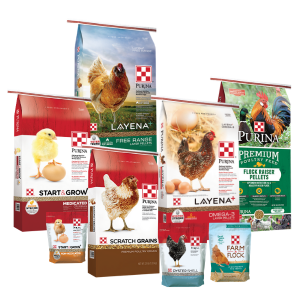 Purina Poultry Feed