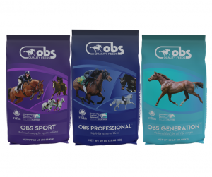 obs sport horse feeds