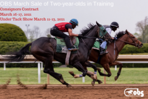March Sale of Two Year Olds In Training