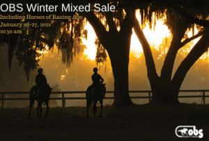 OBS Winter Mixed Sale